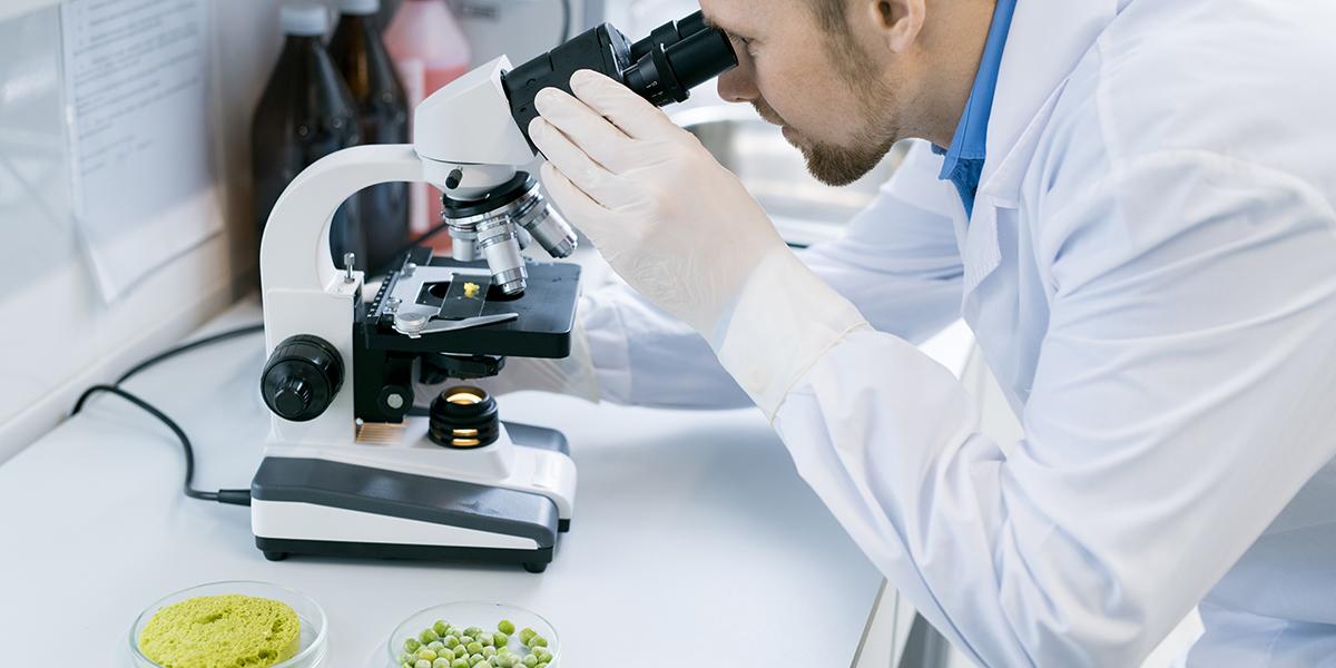 Пищевая лаборатория